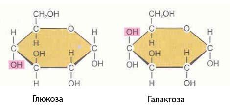 Глюкоза и галактиоза