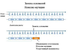 Нонсенс-мутация