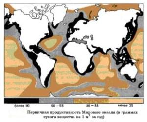 Первичная продуктивность Мирового океана